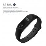 Xiaomi MiBand 2 Black, 6954176827524