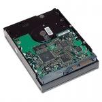 """HP 2.0TB SATA 7200 rpm 6Gb/s 3.5"""" HDD, QB576AA"""