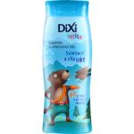 Dixi Sviště šampon a sprchový gel pro kluky, 250 ml