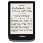 E-book POCKETBOOK 632 Touch HD 3, 16GB,  Metallic Grey, PB632-J-WW